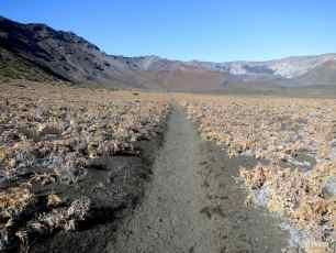 Haleakala Day 3: Sliding Sands, Summits, & Swiss