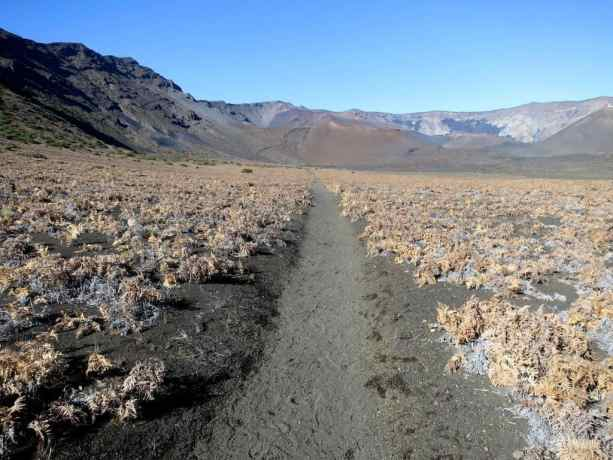 Trail In Haleakala Crater