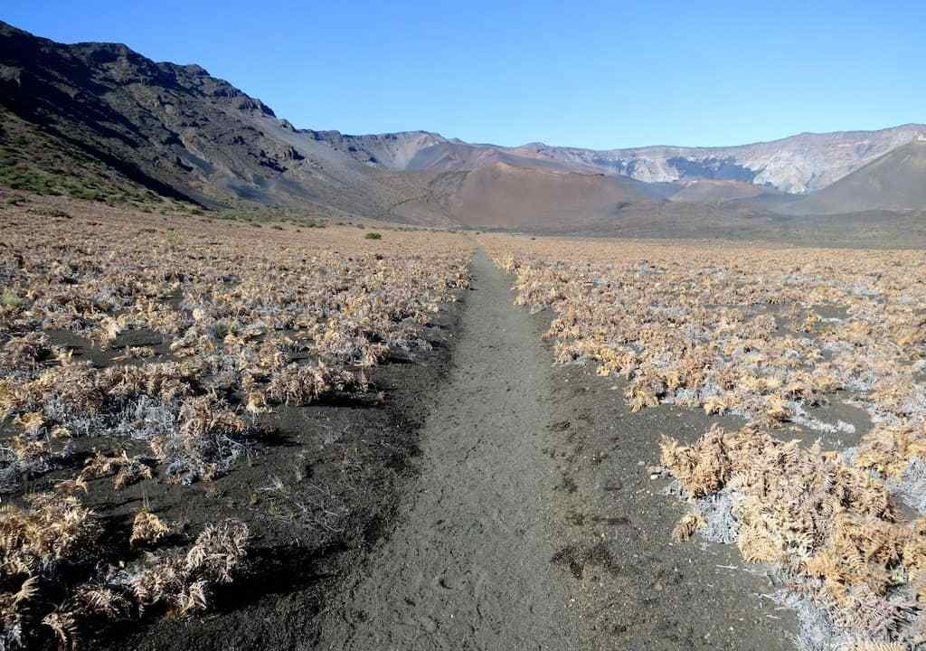 Trail In Haleakala Crater