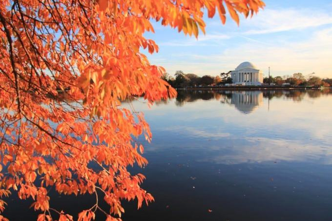 Washington DC Jefferson Memorial Fall