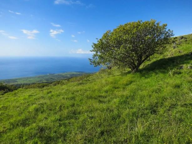 Haleakala Hike Ocean View Maui