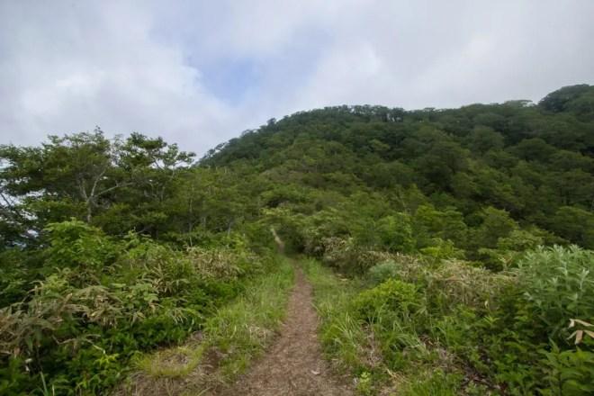 Mt Kanmuri Trail