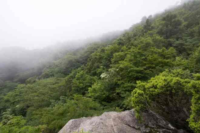 Mt Nosaka Spur Trail View