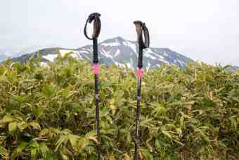 Black Diamond Ergo Cork Trekking Poles