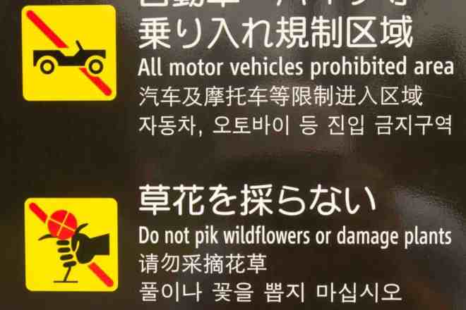 Japanese-Almost-English-8
