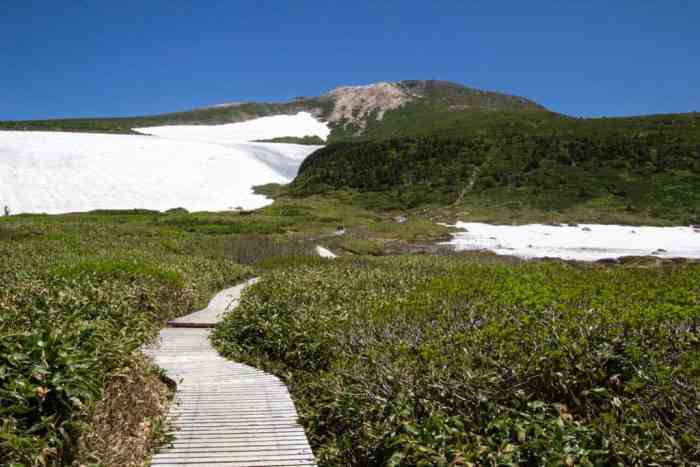 Japan-Mount-Haku-Plank-Trail