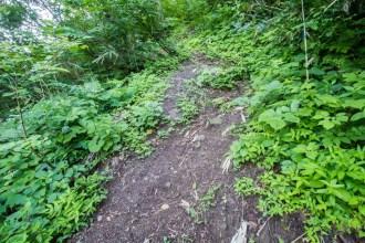 Japan-Mount-Haku-Trail-2