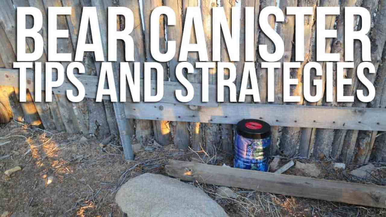 Bear Canister Tips And Strategies | Halfway Anywhere
