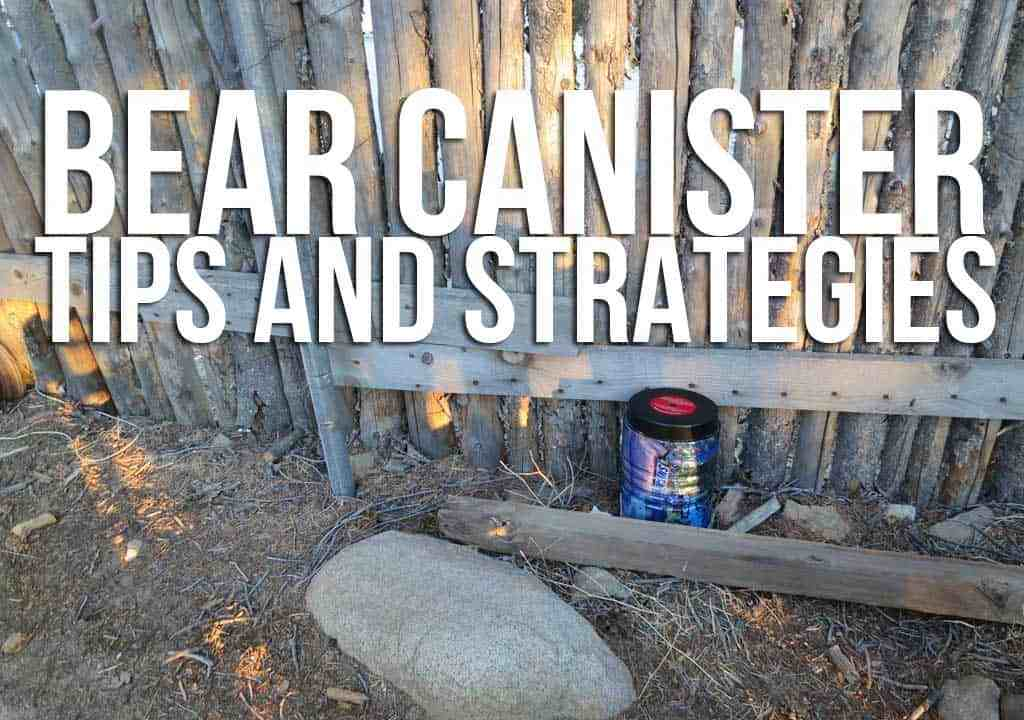 Bear-Canister-Featured