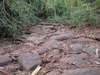 pedra-bonita-trail-3