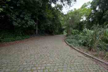 brazil-rio-de-janeiro-cachoeira-dos-primatas-road-1