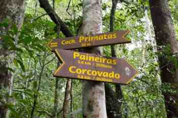 You could also turn this into a great hike up Corcovado.