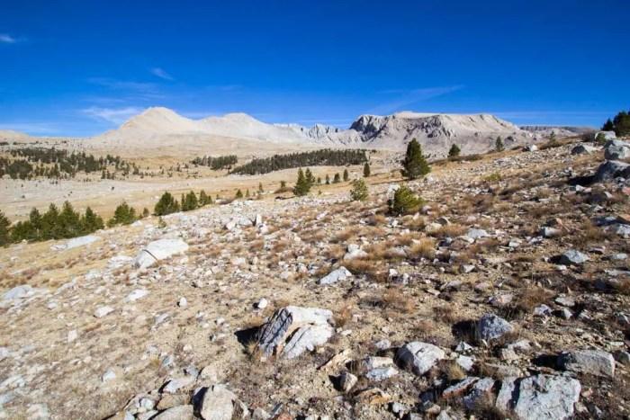 Sierra-Fall-19-Shephard-Approach