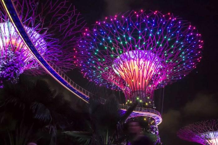 Singapore-Super-Trees