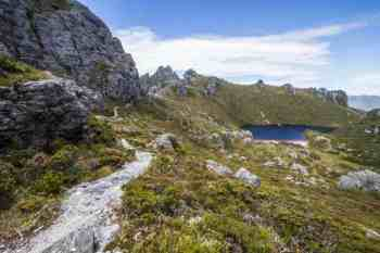 Tasmania-Western-Arthurs-Lake-Cyngus