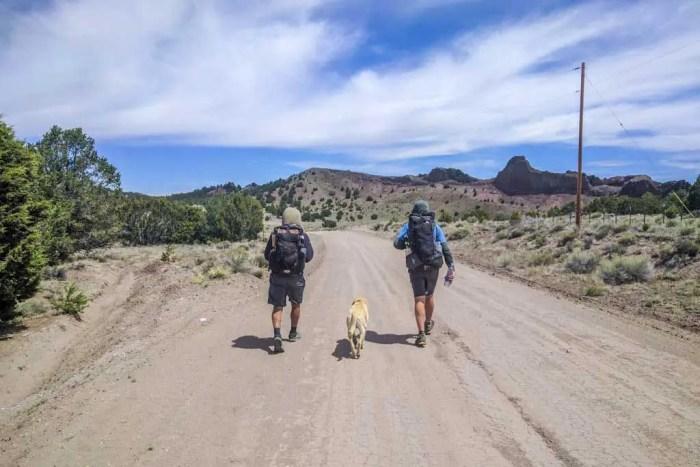 CDT-New-Mexico-Appa-Moist-Stubing-Doggo-Road