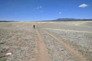 CDT-New-Mexico-Moist-Road-Walk