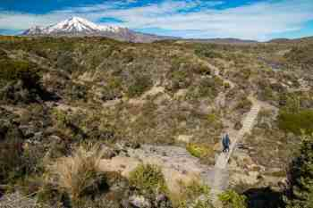 New-Zealand-Round-the-Mountain-Track-North-Side-Carlos