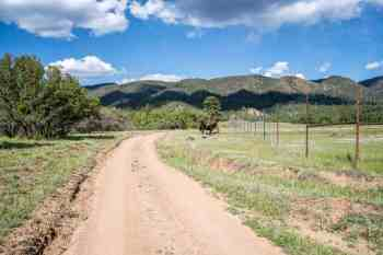 CDT-New-Meixco-Cuba-Dirt-Road-Horses