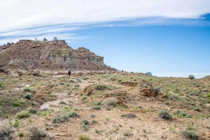 CDT-New-Mexico-Mesas-Appa
