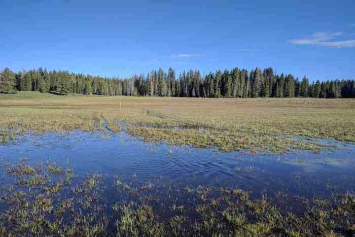 CDT-New-Mexico-Water-Plateau