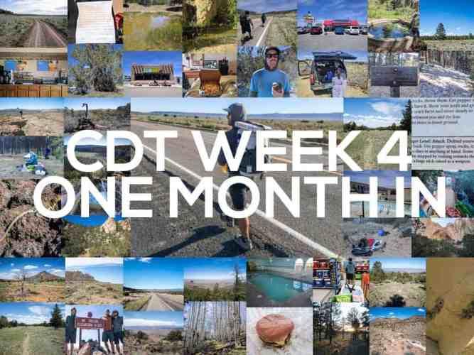 CDT-Week-4-Featured