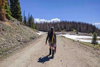 CDT-Colorado-Moist-Alternate-Forest-Road