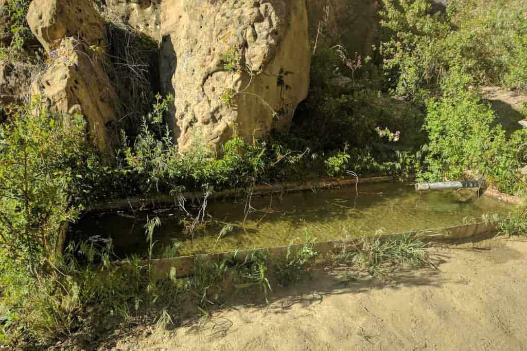 CDT-New-Mexico-Gallery-Water-Source-11