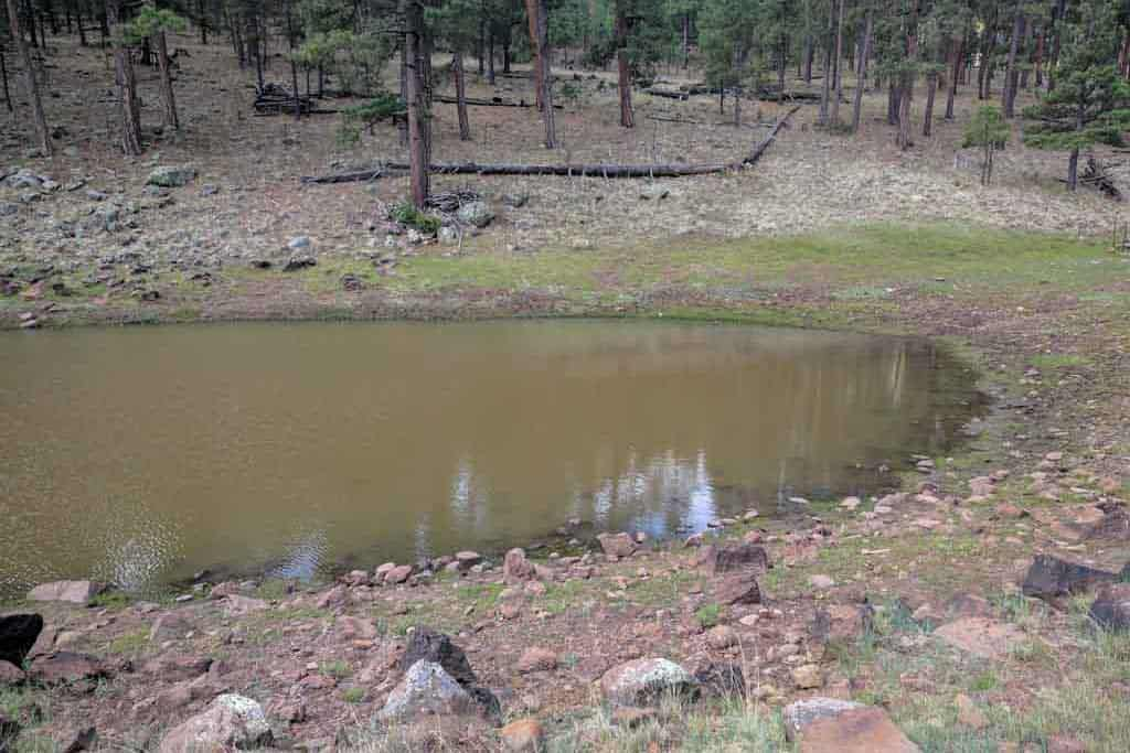CDT-New-Mexico-Gallery-Water-Source-18