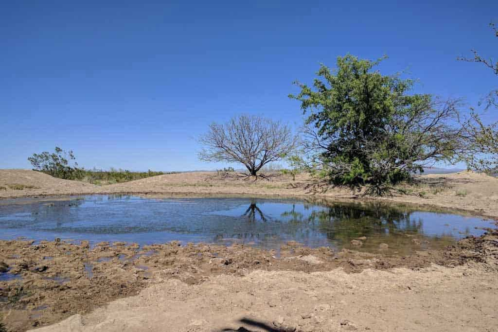 CDT-New-Mexico-Gallery-Water-Source-9