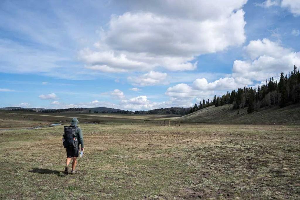 CDT-New-Mexico-Moist-Meadow-No-Trail