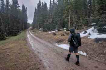 CDT-New-Mexico-Moist-Muddy-Road