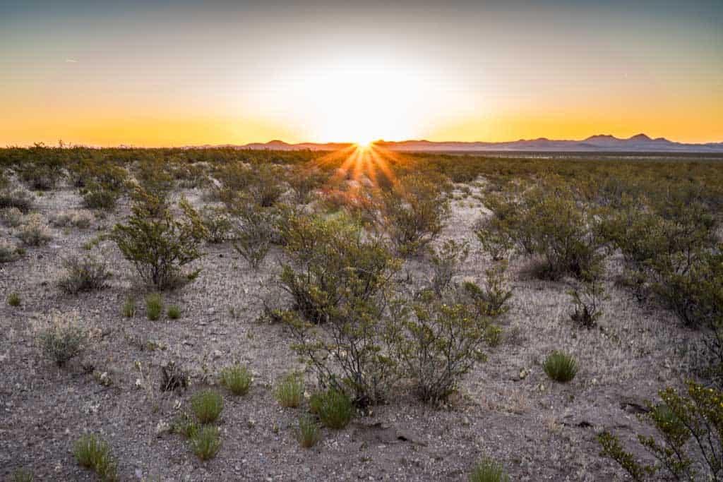 CDT-New-Mexico-Gallery-Desert-Sunset