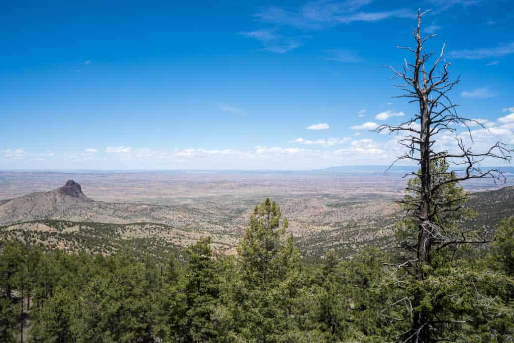 CDT-New-Mexico-Gallery-Desert-View