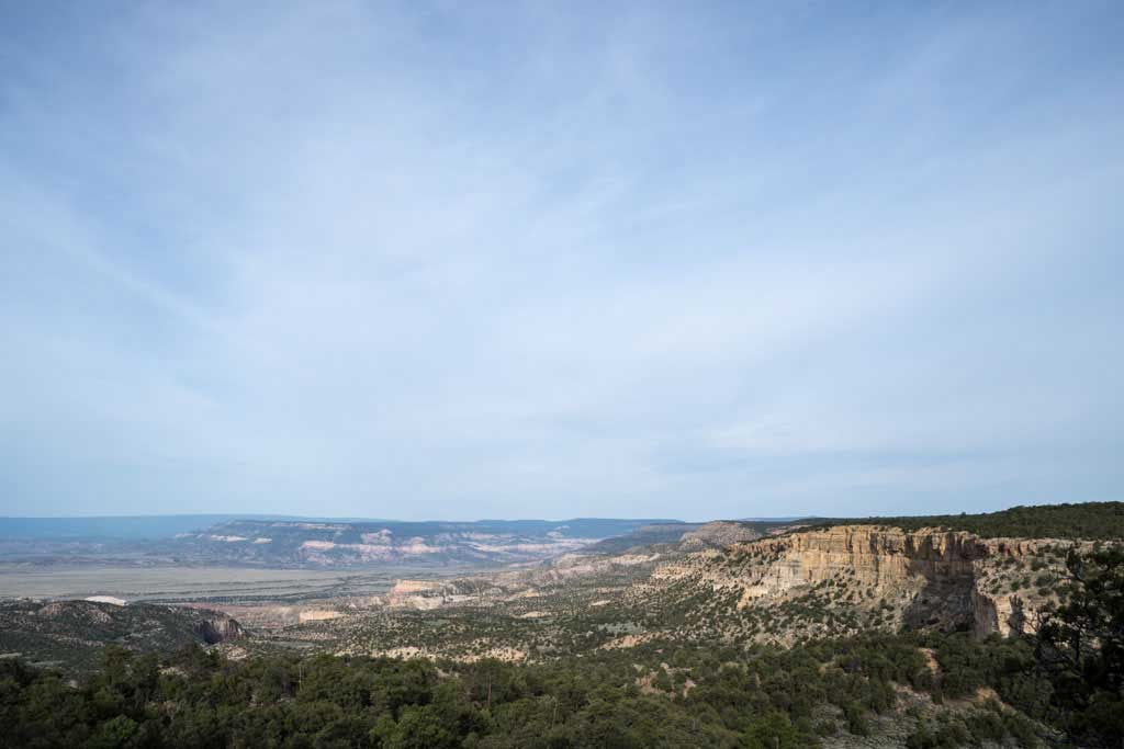CDT-New-Mexico-Gallery-Plateau-Trees