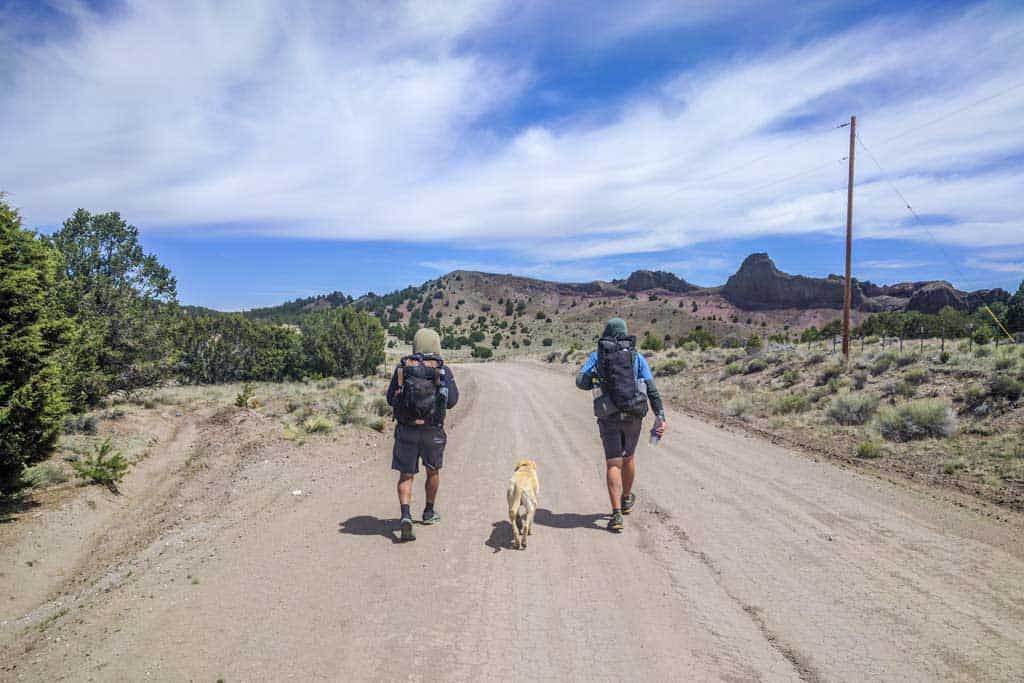 CDT-New-Mexico-Photo-Gallery-Pie-Town-Road-Appa-Moist-Stubing-Dog