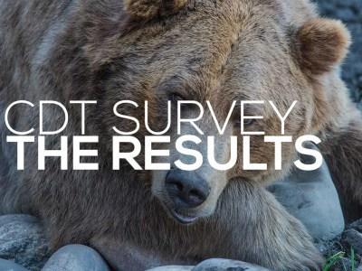 CDT Survey Results