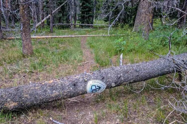 CDT Wyoming Blowdown