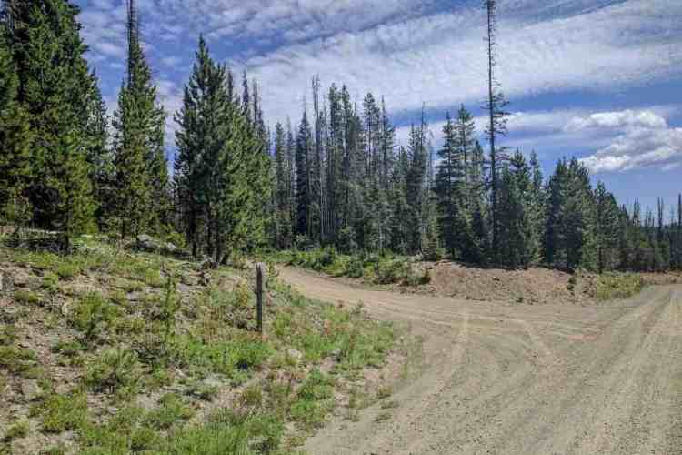 CDT Wyoming Forest Road Shortcut