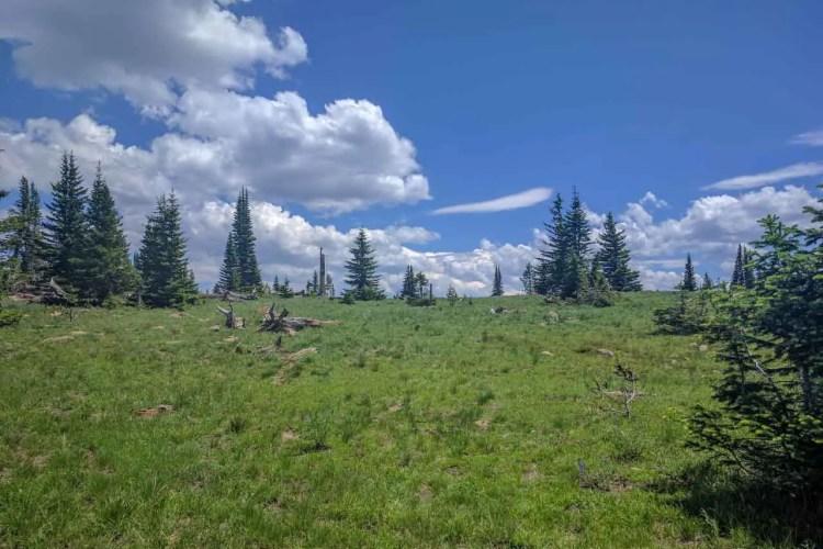 CDT Wyoming Grassy Climb