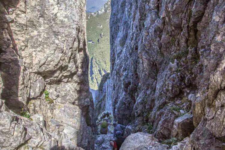 Tasmania Federation Peak Track Gully