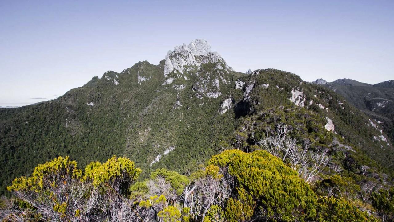 Tasmania Federation Peak Track Guide Featured