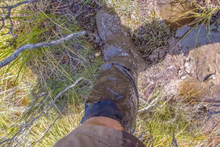 Tasmania Mount Anne Circuit Mud