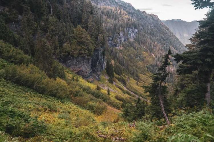 Washington Wonderland Trail Ipsut Pass