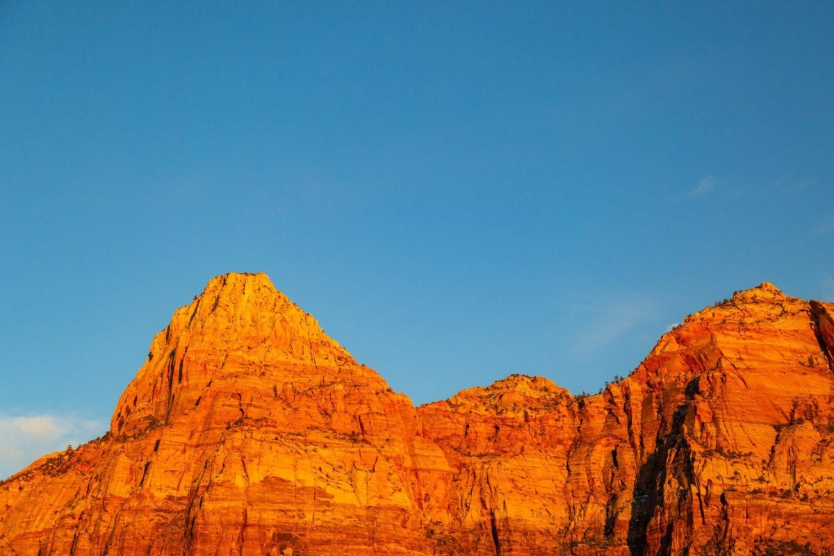 elope in a utah national park like zion for golden sandstone views at sunset