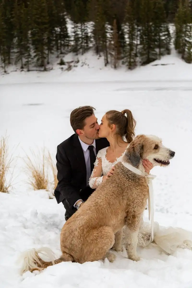 winter mountain elopement in utah with their dog