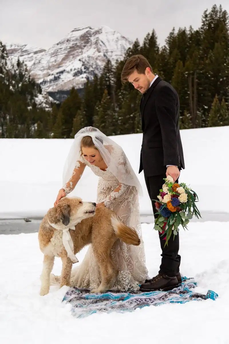 couple petting their dog on their wedding day