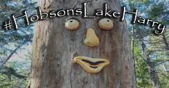 hobsons lake harry