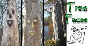 halifax tree faces
