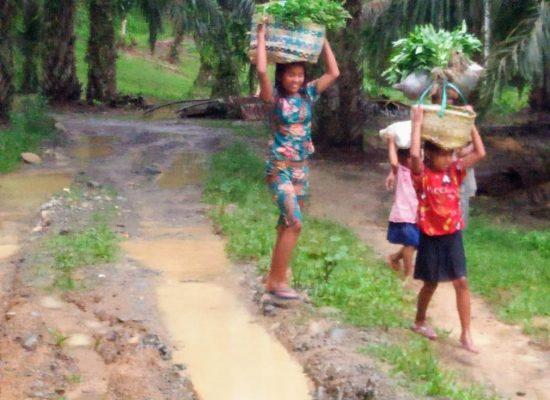 Warga di 2 Dusun Desa Lau Damak, Bohorok Butuh Perbaikan Jalan. Kades Usulkan Anggaran Perbaikan